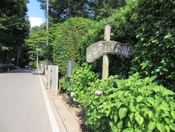 1706_syoubu-road