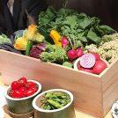 もう行った?浦和にオープンした注目の和食店「新 arata」