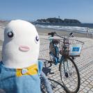 シラセさんぽ 江の島と海の絶景!片瀬海岸沿いへ