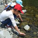 子供と自然体験!武蔵野市「やかつ」の親子野あそびクラブに参加しました