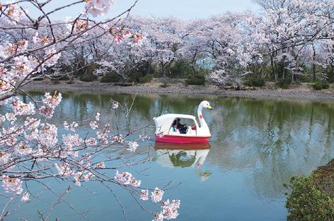 昭和幸福村公園