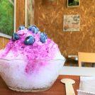 大粒ベリーがオン!「神戸ブルーベリーガーデン cafe」の粉雪かき氷☆