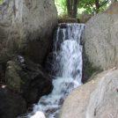 武蔵野市「関前公園」で子どもと水遊び!大人にも癒しのスポット
