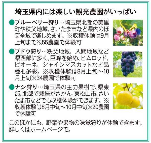 埼玉県内には楽しい観光農園がいっぱい
