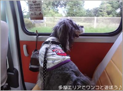 ペットタクシー・smile(スマイル)