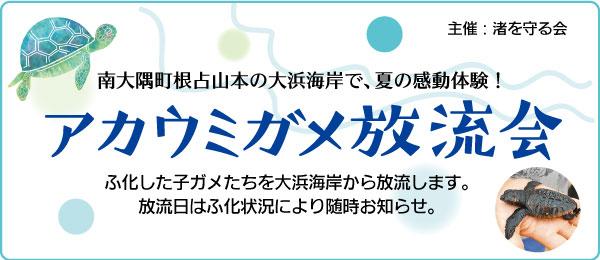 8/21午後6時〜、南大隅町大浜海岸で子ガメの放流会開催!