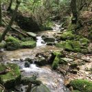 九州百名山「稲尾岳(西口往復)」に挑戦しました!