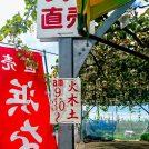 【横浜ブランド】浜なしの季節!旬の横浜を味わいましょう♪