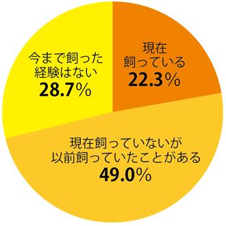 osk_170831honne_graph01