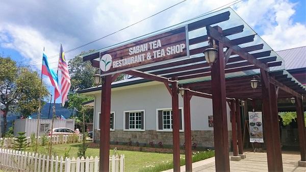 SABA tea