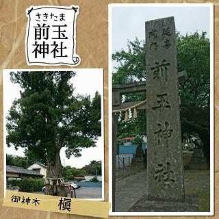 前玉神社・駐車場&ご神木