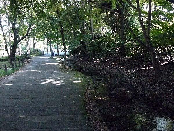 鴨池ログハウス