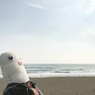 ちょっと 海まで 辻堂のおしゃれカフェめぐり~辻堂海岸へ (湘南 2017年10月28日1442号)