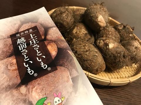 日本人で良かった~♬その5【私の中の冬の風物詩】