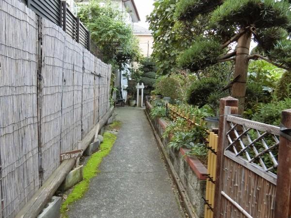 toku_iwa_02