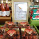 野菜ソムリエサミット金賞受賞☆北の大地の植物工場Jファームの高糖度トマト