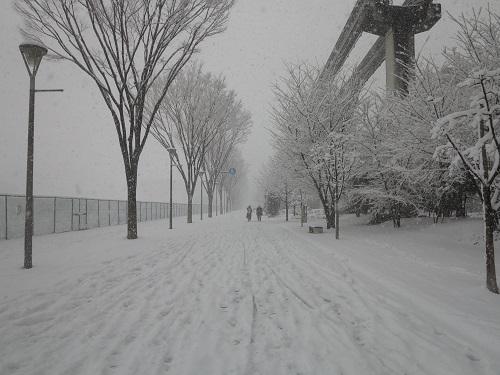 雪景色20180122立川 (2)
