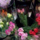 一束399円。「フラリエ」併設のフラワーショップは豪華でお得@上前津