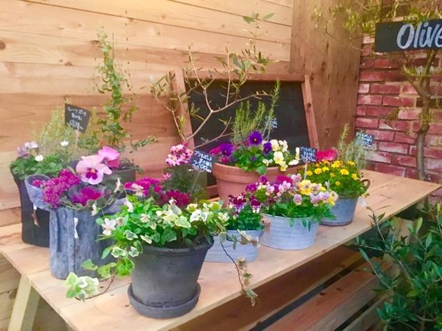 鷺沼にて可愛いお花屋さんを見つけました♪♪