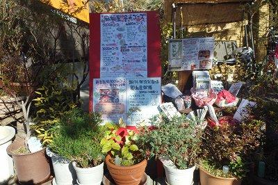 """地産地消の採れたて野菜で作る""""おばんさい""""東浦和『風和里』"""