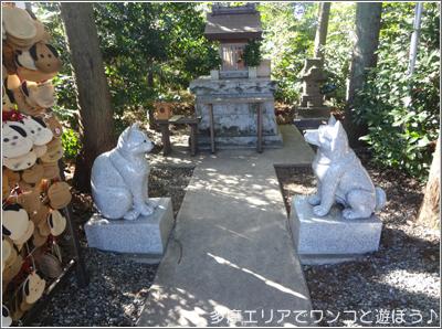 いぬねこ神社