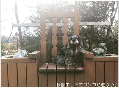 国営 昭和記念公園王様の椅子