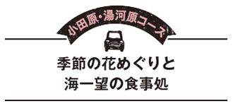 小田原・湯河原コース 季節の花めぐりと海一望の食事処