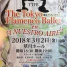 東京フラメンコバレエ