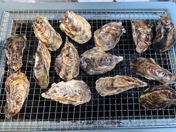牡蠣の季節がやってきました!