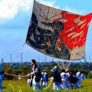 伝統行事「相模の大凧まつり」今年の題字は『翠風』に決定!