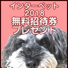 「インターペット2018」無料招待券を10組20人にプレゼント(多摩エリアでワンコと遊ぼう♪)