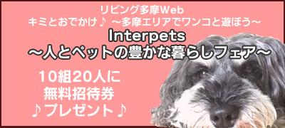 「インターペット2018」無料招待券を10組20人にプレゼント