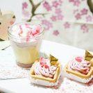 """桜咲く~花が待ち遠しくて。名古屋の""""テイクアウト桜色スイーツ""""7選。"""