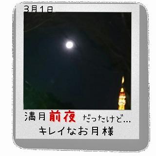 sお月様と東京タワー