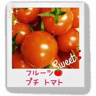 わくわく広場・プチトマト