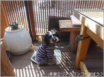 そば 喬藤(きょうどう)