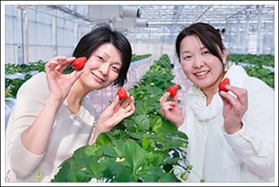 読者の平尾喜美子さん(左)と村野雅子さん(右)。「横浜でイチゴ狩りができるのはうれしい!」