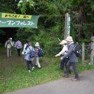 OF2017 kakoiyama  21 (kawakami)森につきました