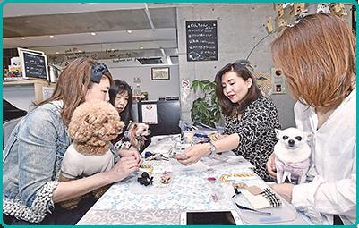 180419_hokusetu_dogcafe_01