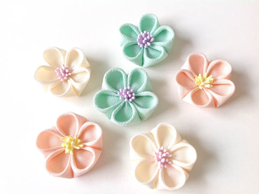 mac_丸つまみ(梅の花)
