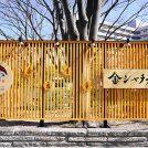 金シャチ横丁の和カフェ「那古野茶屋」で殿様気分を。名古屋城はいま桜吹雪!