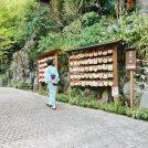 【箱根湯本】滝がある老舗温泉旅館。館内施設も充実で誰もがテンション上がります