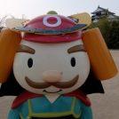 桜が満開!!松山城を子どもと楽しもう!!
