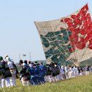 今年の題字は『翠風(すいふう)』 5/4(金・祝)・5(土・祝)「相模の大凧まつり」を開催!