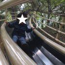 森の静寂vs日本一のすべり台 あつぎこどもの森公園