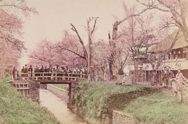 02小金井橋の景(明治後期)