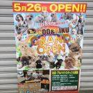 【開店】高円寺に5/26オープン!ペットショップ&猫カフェ