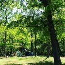 新緑が美しい今、いよいよキャンプの季節到来♪今年初は群馬へ…!
