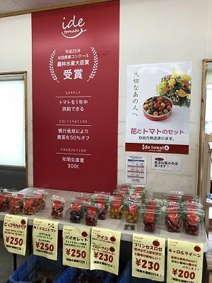 井出トマト 1