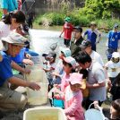 川の中で生き物探し!子どもがイキイキ「天白川で楽しみ隊」(日進市)